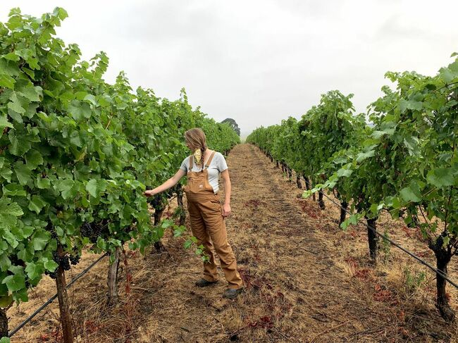 Willamette Valley Wine Moms On What Makes Their Region Special