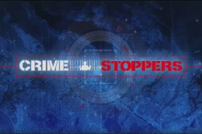 Metro Vancouver Crime Stoppers receives 500 plus tips amid heightened gang violence
