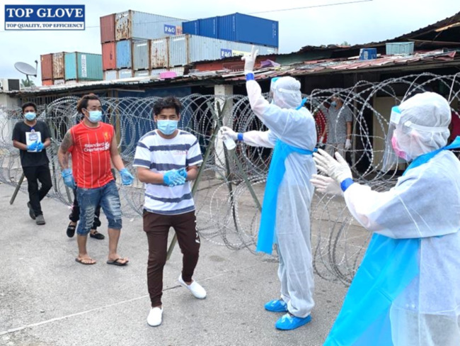 Top Glove in import battle with U.S. government