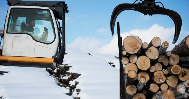 U.S. trade chief pressured to lift duties on Canadian lumber
