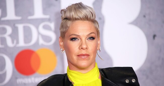 Pink Explains Why Motherhood Wasn't on Her To-Do List Before Welcoming Willow and Jameson
