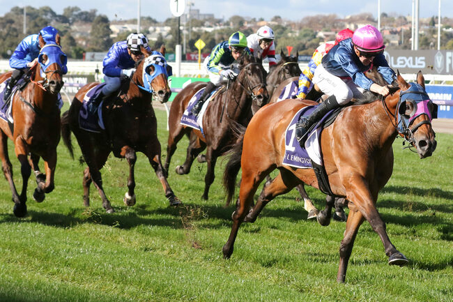 Horse Racing Big Collects, Bets and Moves – Saturday's Races 19/6/2021