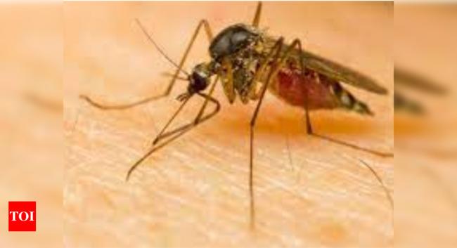 Zika virus cases in Kerala: Kerala reports two more Zika cases; tally rises to 21