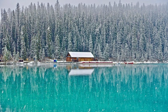 Landscape Photography of Snow-covered Trees, Body of Water, and House