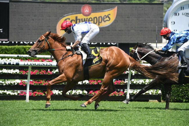 28/8/2021 Horse Racing Tips and Best Bets – Kembla Grange, San Domenico Stakes day