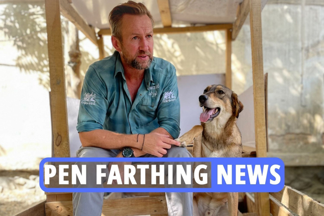 Pen Farthing news latest: Ex-marine announces his return to the UK on twitter as rescued dogs begin quarantine