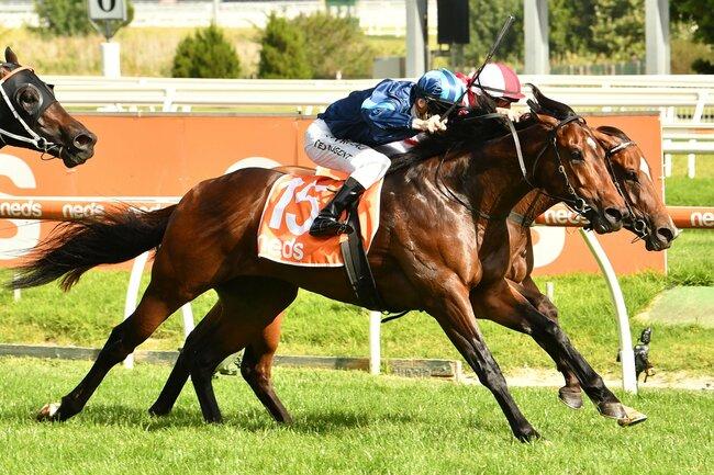 G1 winner heads odds in the McEwen Stakes