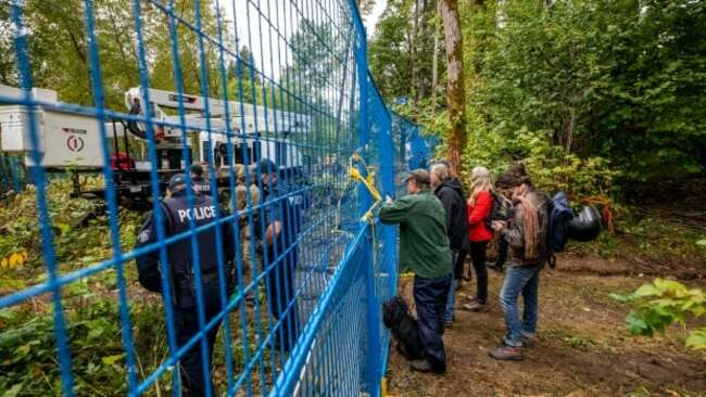 Police in cherry picker remove, arrest anti-pipeline tree-sitter in Burnaby