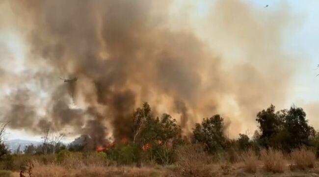 Brush fire in Whittier Narrows Reservoir burns 20 acres