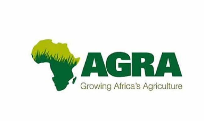 The quest for an Inclusive Agricultural Transformation: My AGRA story