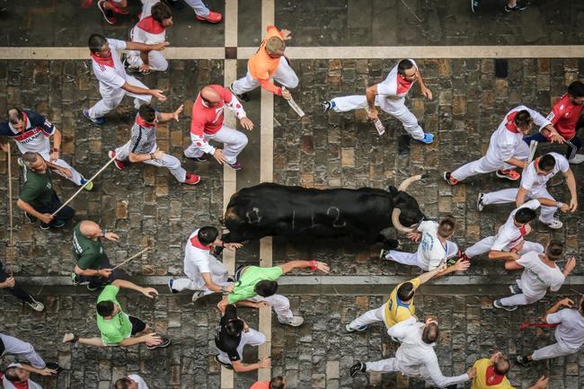 Navarra Bull Run
