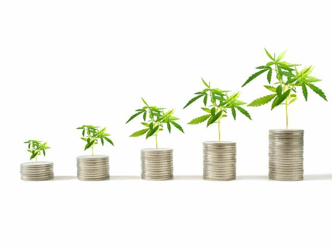 Scotts Miracle-Gro Wows Investors With Its Q2 Results